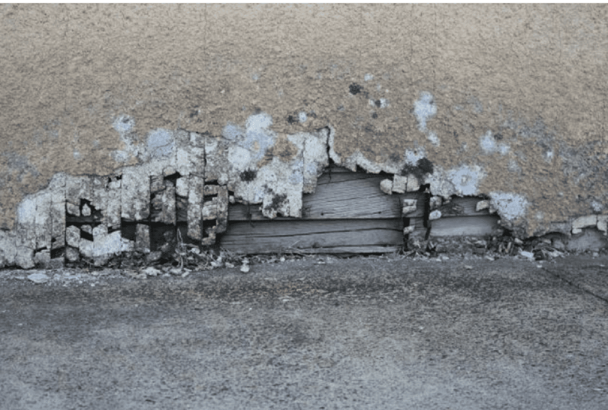 What is Toxic Mold Litigation?
